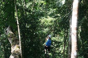 Jamaica-Canopy-Tour