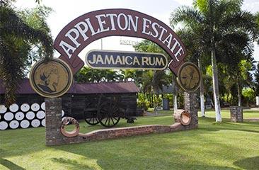 appleton-rum-s